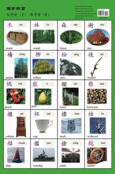 Chinese Radicals Posters (Traditional Characters) Part 2 | Chinese Books | Learn Chinese | Posters | ISBN 9781606331309 9781606331262 9781606331293 9781606331279 9781606331354 9781606331347 9781606331330 9781606331316 9781606331323 9781606331286