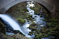 Val de Travers: Im Wald der Grünen Fee. #Reisen #Reise #Reiselust #Schweiz #Absinth http://www.huffingtonpost.de/uta-petersen/im-wald-der-gruenen-fee_b_8098536.html?utm_hp_ref=reisen