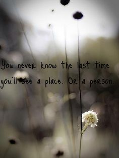 ❥ you never know