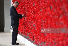 Prince Charles, Prince of Wales places a poppy on the Roll of Honour at the Australian War Memorial on November 11, 2015 in Canberra, Australia. The Royal couple are on a 12-day tour visiting seven regions in New Zealand and three states and one territory in Australia.
