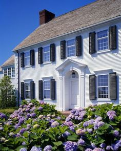 Colonial with hydrangeas | More here: http://mylusciouslife.com/beautiful-houses-and-gardens/