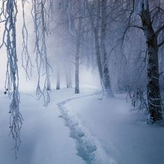 truely love winter's scenary, nothing compares