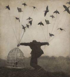 Robert and Shana ParkeHarrison - Flying Lesson