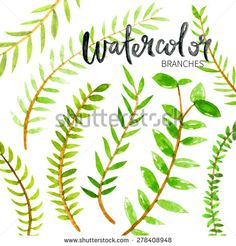Hand painted watercolor branches with leaves. - stock vector