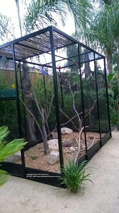 Custom Built Aviary - in the setting, simply stunning, The bird cage is equally a house for the birds and a decorative tool. You can select anything you want one of the bird cage versions and get a lot more particular images. Diy Bird Cage, Bird Cage Design, Reptile House, Reptile Cage, Finch Cage, Garden Pond Design, Large Bird Cages, African Grey Parrot, Bird Aviary