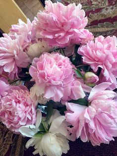 pink dinner plate peony - Google Search | Peonies ;) | Pinterest | Pink dinner plates Peony and Flowers & pink dinner plate peony - Google Search | Peonies ;) | Pinterest ...