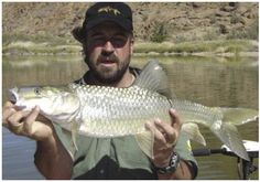 South African yellowfish on the fly. Fly Guy, Fly Fishing, South Africa, African, Fly Tying, Camping Tips
