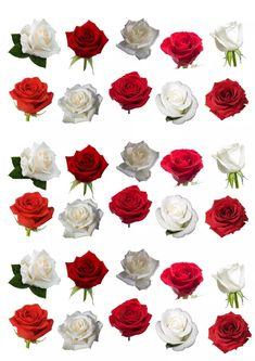 (3) 30 Flores Rosas Papel De Arroz Comestivel Decorar Bolos Cupc - R$ 35,00 em Mercado Livre