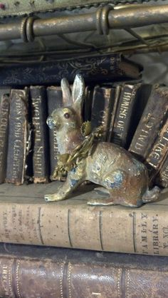 Bunny and Books.