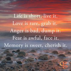 Life is short, live it. Love is rare, grab it. Anger is bad, dump it. Fear is awful, face it. Memory is sweet, cherish it.