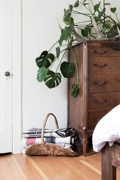10 Pretty, Practical Ways to Store and Display Blankets: Blankets in a Firewood Carrier