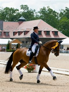 oblivious to all the political controversy regarding her owners - rafalca is beautiful to watch doing dressage (partially owned by ann and mitt romney) and has qualified for the 2012 olympics