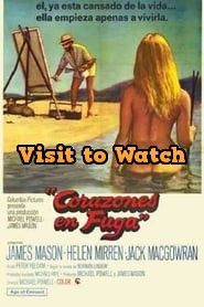 [HD] Corazones en fuga 1969 Pelicula Completa en Español Latino Top Movies, Online Gratis, Comedy, Watch, Movie Posters, Hearts, Life, Clock, Bracelet Watch