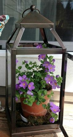 A UTILISER une lanterne comme porte pot de fleurs