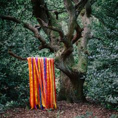 Stream James Holden & The Animal Spirits - The Animal Spirits, a playlist by Border Community from desktop or your mobile device Saxophone, Pink Floyd Meddle, Thunder Moon, Carnival Of The Animals, Shaquille O'neal, Cd Album, Lp Vinyl, Vinyl Records, Drawing S