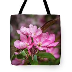 Tote Bag featuring the photograph Flowering Crab Tree Beauty by Michael Johnk