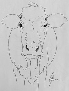 Cow art drawing www hoerskens de – Artofit Animal Paintings, Animal Drawings, Art Drawings, Paintings Of Cows, Drawings Of Faces, Cow Paintings On Canvas, Drawing Animals, Cow Face, Learn Art