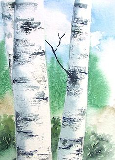 Birch Tree Painting Original Watercolor Art by 6catsart on Etsy, $28.95