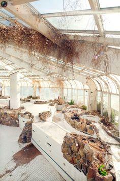 ronbeckdesigns:  Tropicana: An Abandoned Tropical Indoor...