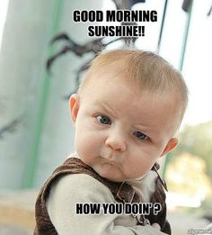 44 Best Funny Good Morning Quotes Images Funny Good Morning