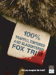 100% trapped, tortured and slaughtered FOX TRIM. #fur hags are ugly. #vegan #vegetarian | Against animal cruelty, animal abuse, against fur - Support animal rights.