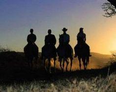 Addo Horse Trails - Garden Route