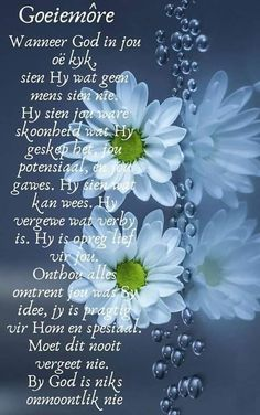Lekker Dag, Goeie More, Good Morning, Fancy, Afrikaans, Thoughts, Buen Dia, Bonjour, Good Morning Wishes