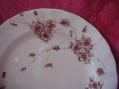 Excited to share the latest addition to my #etsy shop: One Dozen Royal Doulton Floral Cake Plates Vintage Victorian Dinnerware Antique Transferware China May Pattern 1875 Set of 12 http://etsy.me/2jF6gAG #housewares #white #red #ceramic #housewarming #christmas #dessertplates #ro