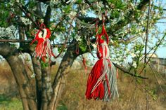 Tree decorated with amulets. Photo by Flickr user Niv Singer (CC BY-SA).