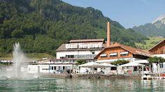 In der Glasi-Bar am See werden Getränke und Snacks angeboten.