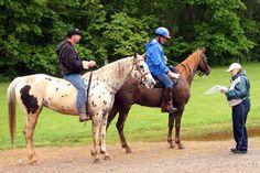 wikiHow to Ride a Horse Bareback -- via wikiHow.com