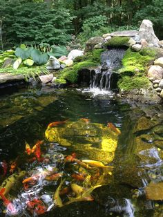 21 best backyard waterfall ideas that will inspire you 16 Japanese Water Gardens, Small Water Gardens, Japanese Koi, Koi Fish Pond, Fish Ponds, Backyard Water Feature, Ponds Backyard, Design Fonte, Koi Pond Design