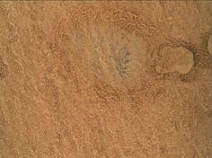 MAHLI raw images, focus merge - NASA, Mars Science Laboratory, Curiosity Rover