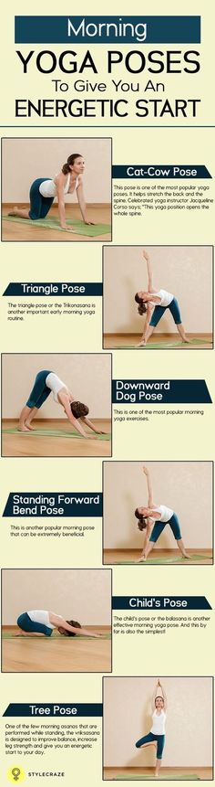 DownDog Diary Yoga Keeps you Young: 10 Effective Morning Yoga Poses To Give You An Energetic Start