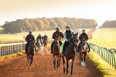Stay at the Home of Horse Racing: #Newmarket #Racecourses