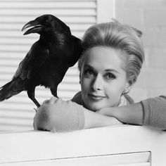 """I grew to love the ravens""⠀ ⠀ #tippihedren #bornonthisday"