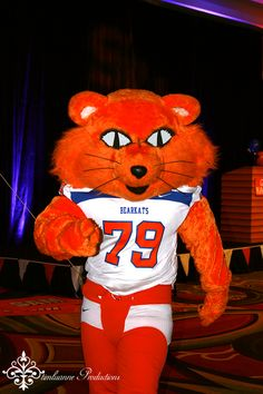 Sammy Bearkat at Sam Houston State (SHSU) Alumni Pep Rally - 2013 FCS Championship weekend