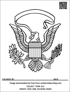 American Flag Eagle V8 Coloring Book