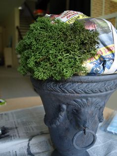 Make your own moss topiary urn. Newspaper, floral moss and any urn or pot of your choice. Topiary Trees, Topiaries, Moss Decor, Home Crafts, Diy Crafts, Flower Arrangements Simple, Diy Craft Projects, Craft Ideas, House Projects