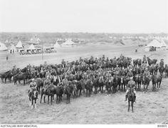 Original horses of the 8th Australian Light Horse Regiment and their mounted handlers. Ottoman Empire: Lebanon, Tripoli Dec 1918