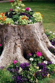Front Yard Garden Design 45 gorgeous pretty front yard and backyard garden landscaping ideas, dog wood tree front yards - We will show you some Front Yard, Backyard Ideas and make great Garden and Landscaping for your home If your yard comes with Garden Art, Front Yard Landscaping, Garden Design, Tree Stump, Rock Garden, Upcycle Garden, Plants, Tree Stump Planter, Garden Projects