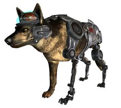 If you played Fallout: New Vegas and made it through the glitches and generally uninspired experience you eventually met Rex. Description from mortarnpistol.com. I searched for this on bing.com/images
