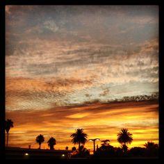 Beautiful LA sunset