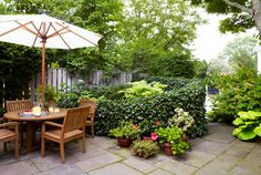 Image result for tiny garden ideas
