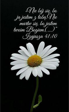 Jehovah's Witnesses, Torah, Motto, Prayers, Faith, Teaching, God, Motivation, Worship