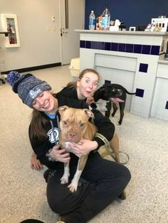 2/5/17 Leave it to the animal loving women of Drake University's Rowing Team in Des Moines, Iowa on Saturdaymorning who had been practicing on the Des Moines River when they spotted a pair of pit bulls running in the bushes nearby. Suddenly the dogs ran out onto the thin ice and broke through; falling into the …