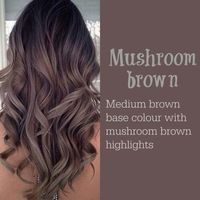 Mushroom Brown Hair - Medium Brown With Gray Highlights