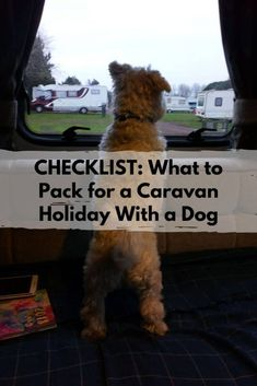 Did you know more than 50% of people who travel in a recreational vehicle bring their dog with them? This packing list, which is also downloadable and printable, will ensure you bring everything your pup needs. #travelingwithdogs #travelingwithpets #roadtripwithdogs Pet Sitters International, Emergency Hospital, Caravan Holiday, Dog Travel, Dog Runs, Pet Costumes, Parenting 101, What To Pack, Pet Health