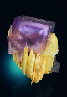 """La Cabaña"", this fluorite sample has a zoned cube of 6 cm of edge perched in baryte crystals Jeff Scovil photo. (Author: jrg)"