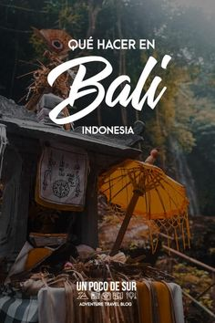 Que podemos hacer en Bali, Indonesia. No te pierdas esta Guia! Travel Tips, Travel Blog, Travelling Tips, Traveling, Bali Travel, The Good Place, Life Is Good, First Love, Places To Visit